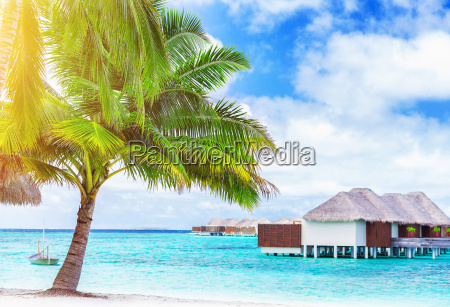 paradise beach landschaft
