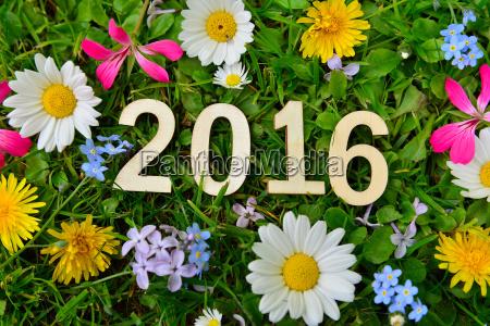 2016 jahr silvester neujahr