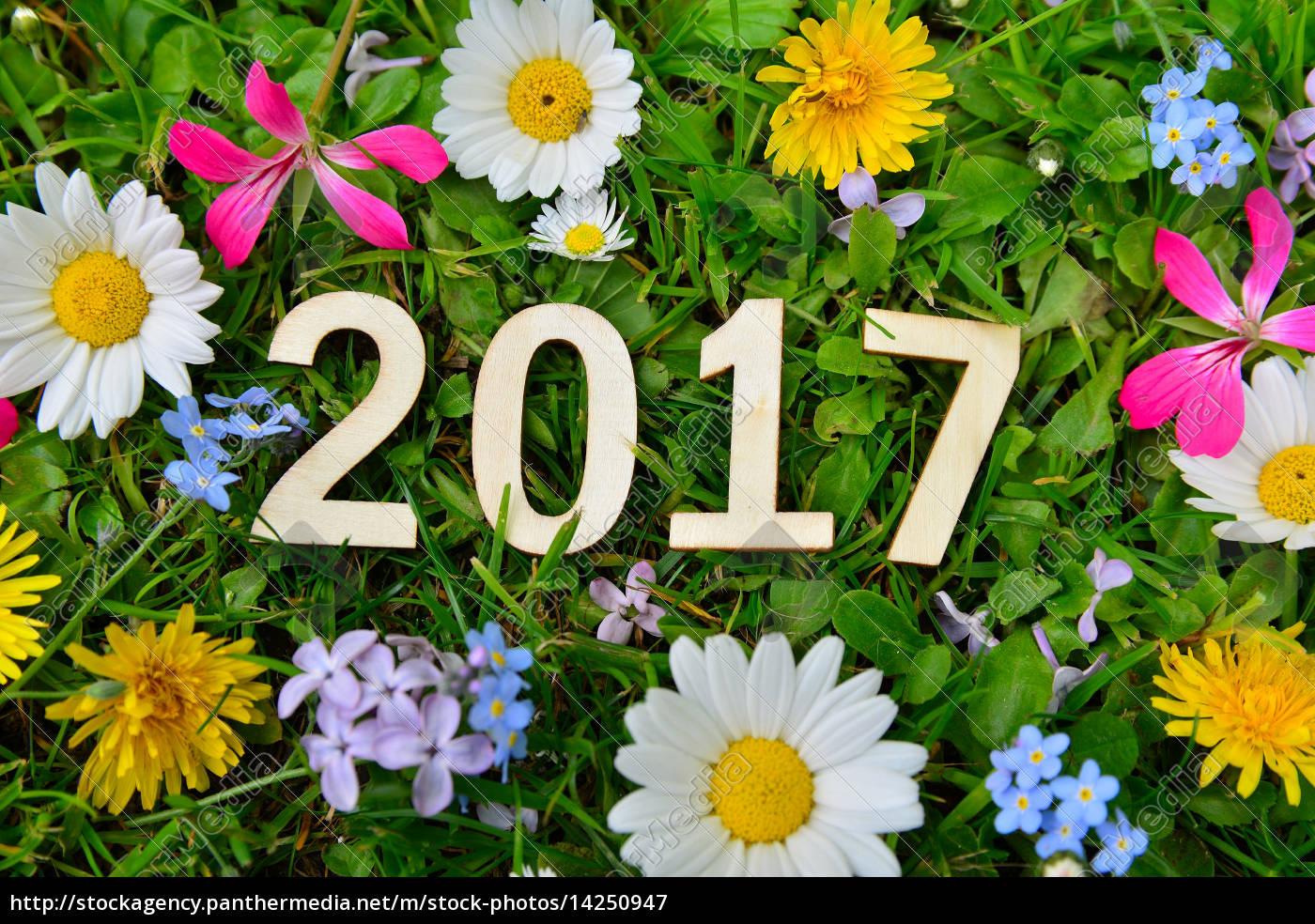 Bilder Silvester Neujahr