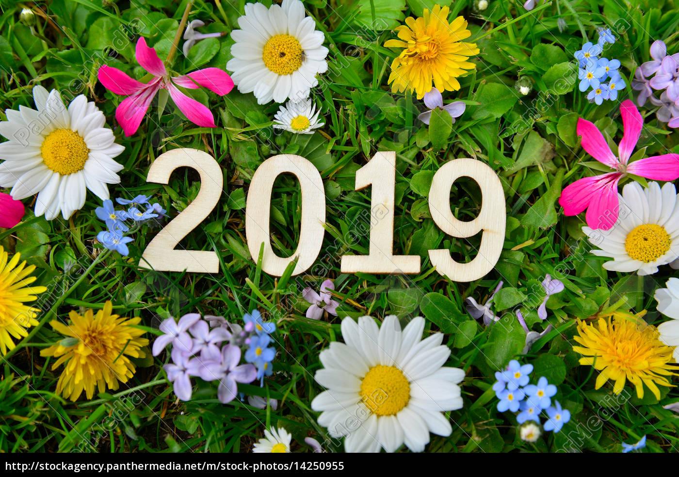 Bilder Neujahr 2019