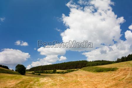 landscape near troebnitz