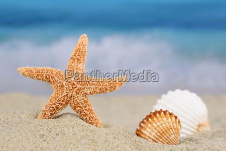 strand szene im sommer urlaub mit