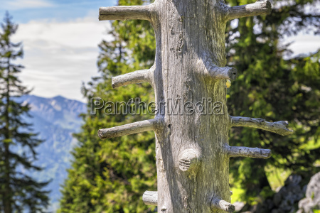 trunk breitenstein bavaria alps