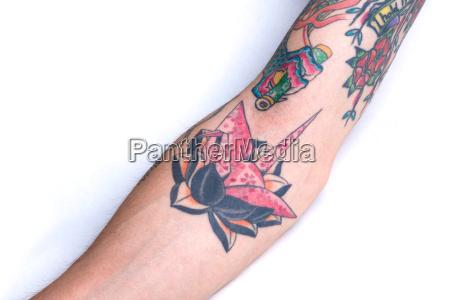 rosa kran black lotus unterarm tattoo