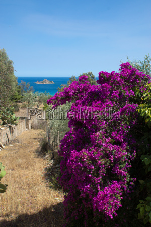 mediteranes flair in sardinien