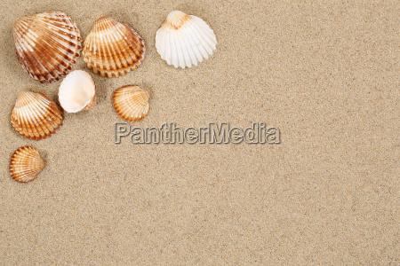 viaggiare vacanza vacanze vacanze estive riva