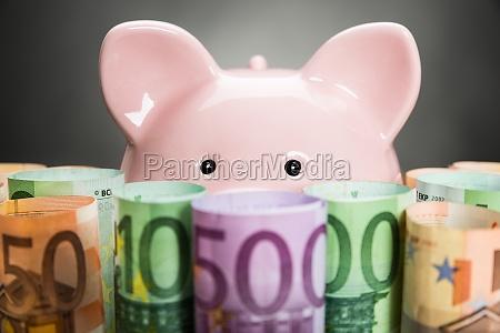 sparschwein mit euro banknoten