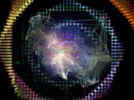 inner life of netzwerk