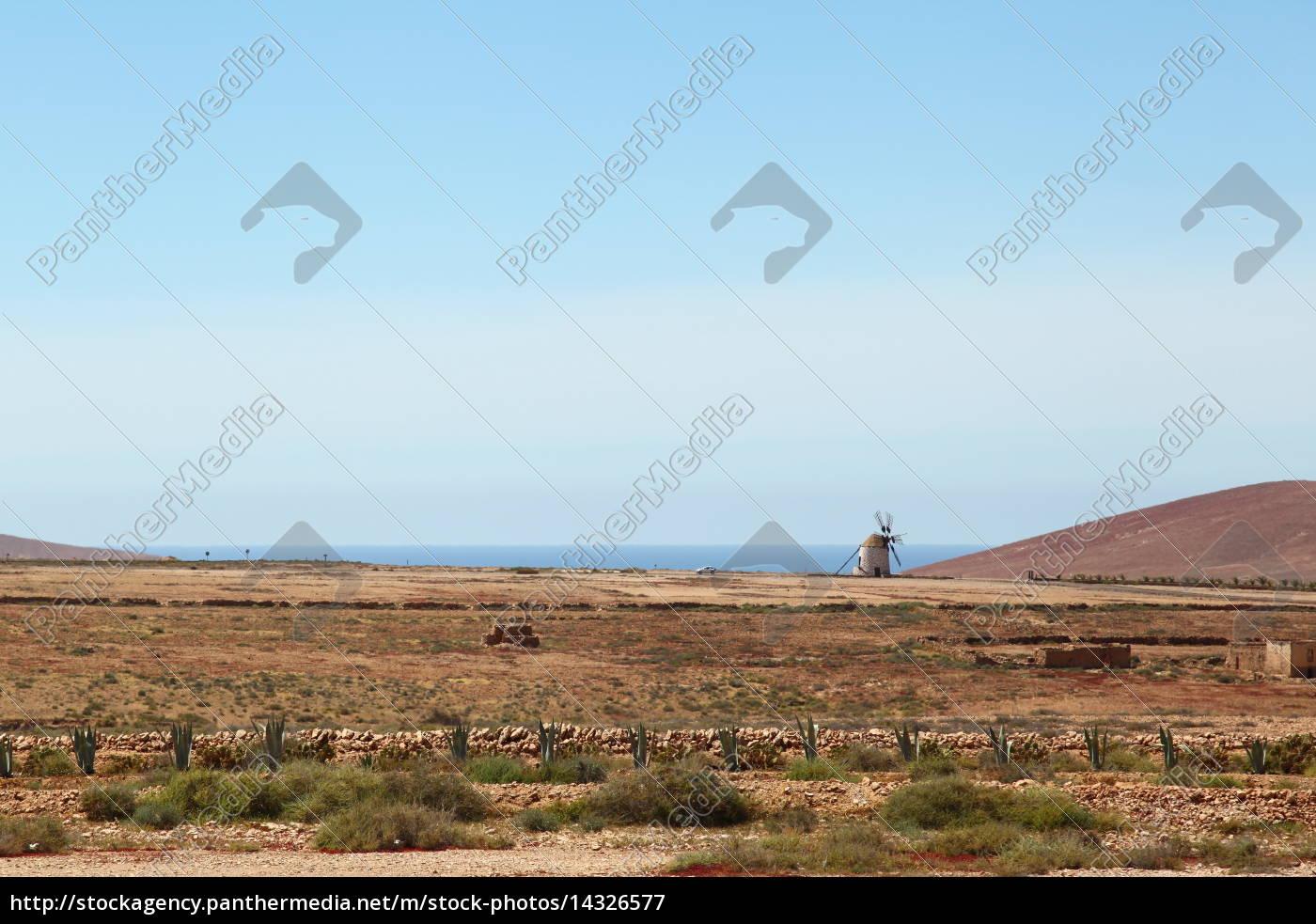 Fuerteventura, Kanarischen Inseln, Kanaren, Insel, Landschaft, Urlaub - 14326577
