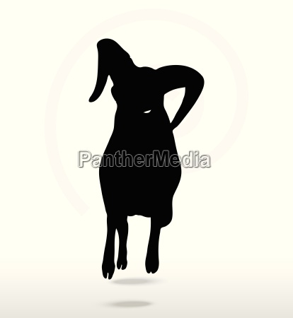 grosse horn schafe silhouette in angreifender