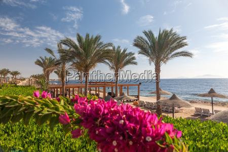 strand im luxushotel sharm el sheikh