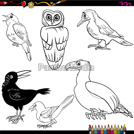 vögel cartoon malvorlagen - Stockfoto - #14352501 - Bildagentur ...