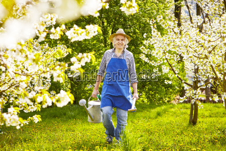 gardener watering cherry spade head