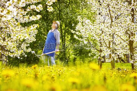 gardeners spade watering loewenzahnwiese