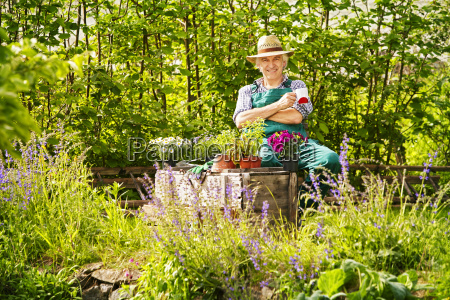 garden gardener plants straw hat sitting