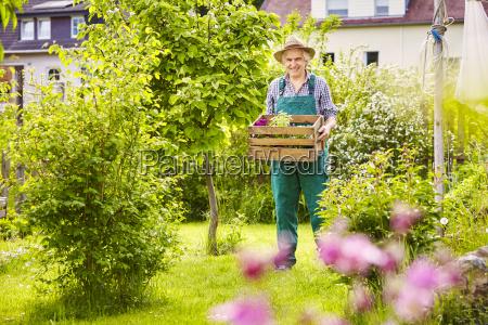 gardening straw hat wearing crate plants
