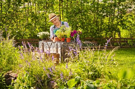 garten, gärtner, strohhut, pflanzen - 14371927