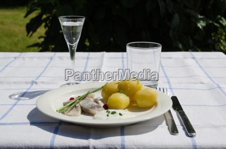 traditionelle schwedische hochsommer delikatesse