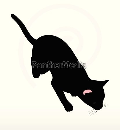 katze silhouette in stalking pose