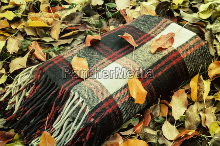 warm and cozy blanket for relaxing