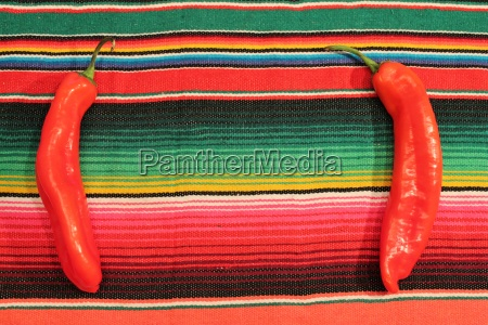 poncho chili mexico background with copy