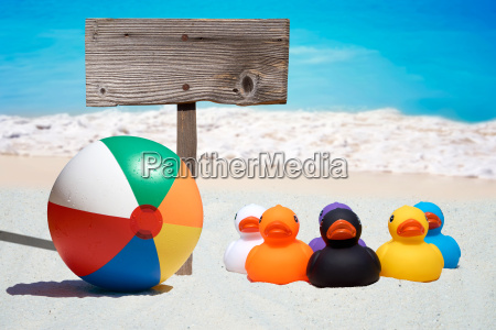 six colorful rubber ducks and a