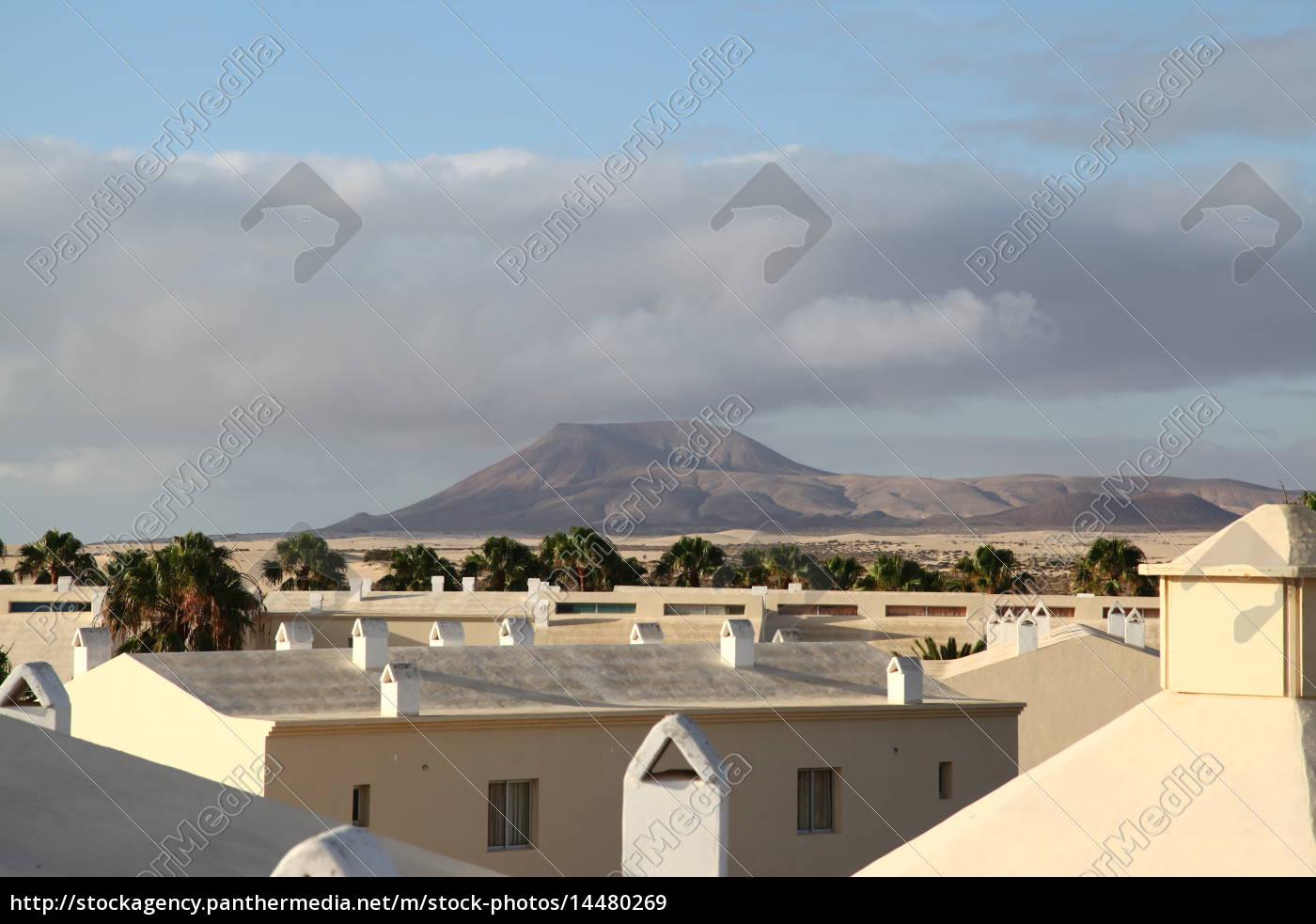 Fuerteventura, Kanarischen Inseln, Kanaren, Insel, Urlaub, Reise - 14480269