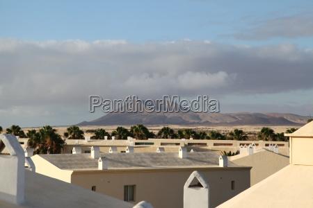 Fuerteventura, Kanarischen Inseln, Kanaren, Insel, Urlaub, Reise - 14480275