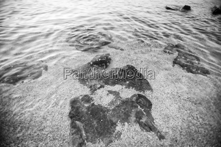 sea water surface bw