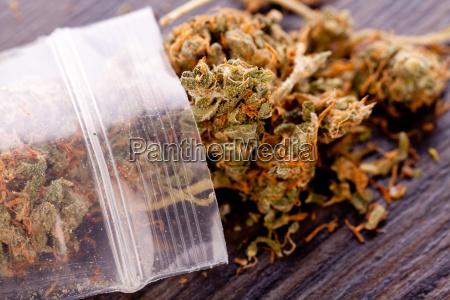 cannabis marihuana blueten in kleinem beutel