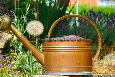 nahaufnahme ein alten giesskanne aus kupfer