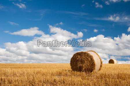 sommerfeld with straw bales