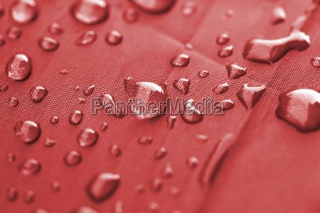 closeup of rain drops