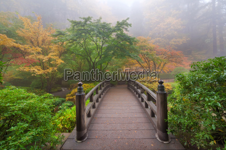 moon bridge in foggy fall morning