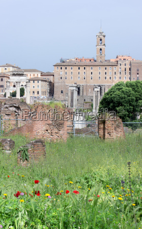 columns and ruins in the roman