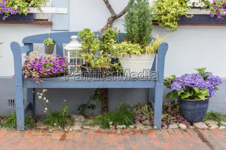 blue garden bench in front of