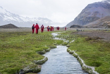 group of people walking near fortuna