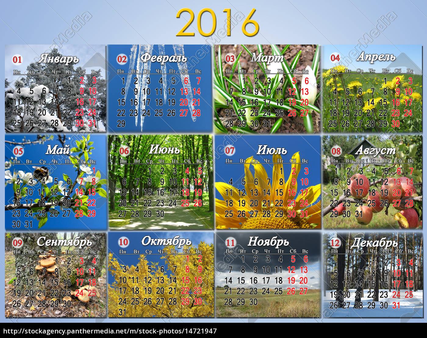 kalender, für, 2016, in, russisch, mit - 14721947