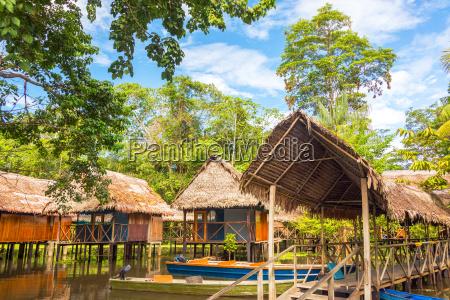 jungle shacks