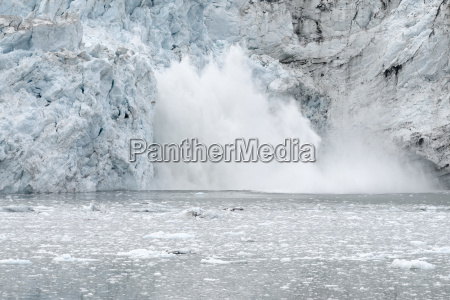 margerie glacier calving glacier bay national