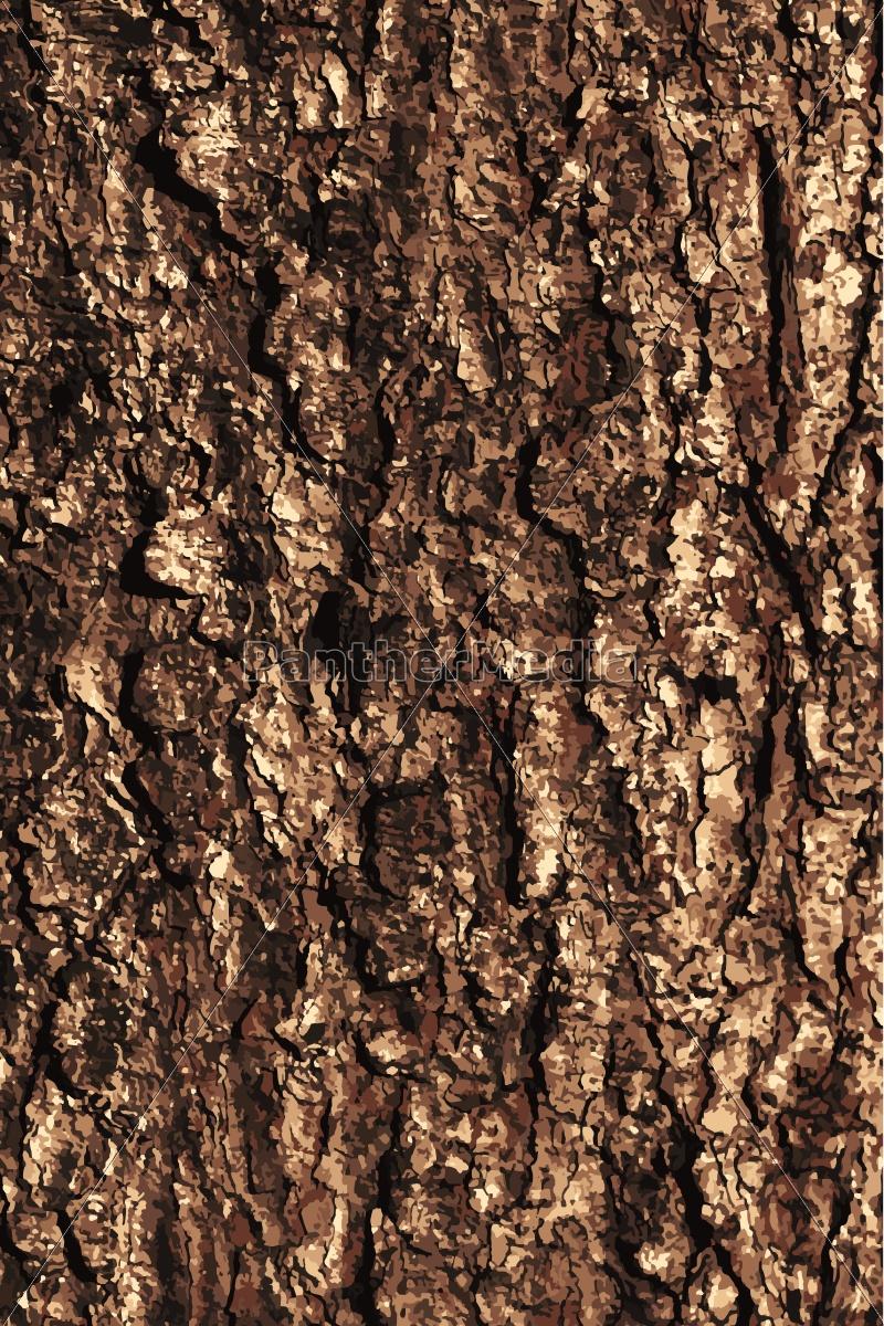 pine, bark, texture, pattern - 14770183
