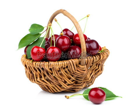 basket full of fresh red cherry