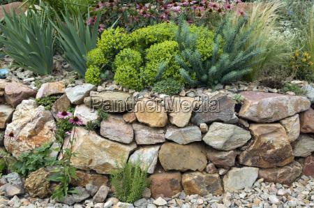 steingarten trockenmauer fuenf monate nach bepflanzung