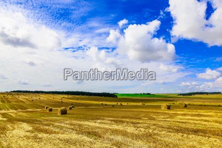 blau horizont landwirtschaft ackerbau wolke feld