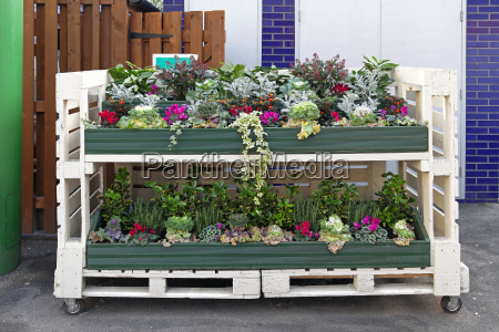 pallet with flowers
