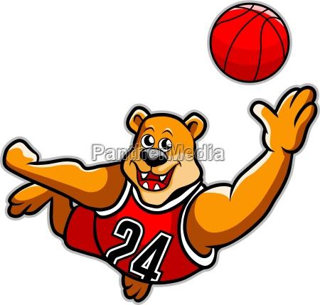 basketball baeren