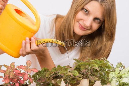 the girl waters flowers from a