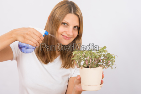 she moisturizes houseplant