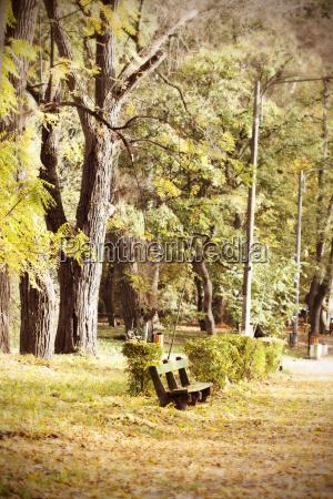 baum baeume park blaetter sitz sitzplatz