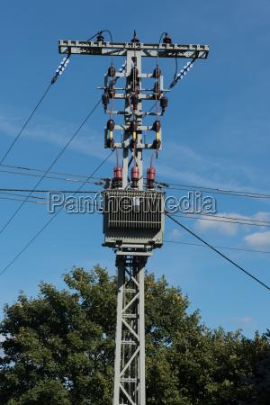 baum energie strom elektrizitaet abkuehlung kuehlung